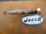 joker 20100116 9.jpg
